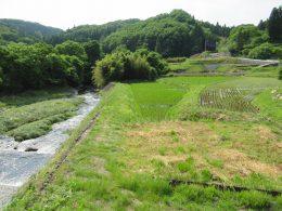 Tochigi nature